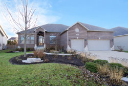Photo of 350 Andover Drive, OSWEGO, IL 60543 (MLS # 10436857)