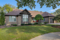 Photo of 463 N Clubview Court, ADDISON, IL 60101 (MLS # 10438770)