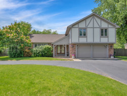Photo of 8200 Wolf Road, WILLOW SPRINGS, IL 60525 (MLS # 10439274)