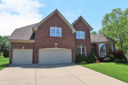 Photo of 1 Cranberry Court, STREAMWOOD, IL 60107 (MLS # 10445156)