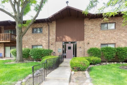 Photo of 100 Willow Lane, Unit Number B214, WILLOW SPRINGS, IL 60480 (MLS # 10445204)