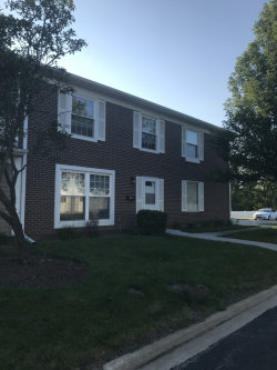 Photo of 1535 E Woodcutter Lane, Unit Number B, WHEATON, IL 60189 (MLS # 10448201)