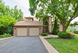 Photo of 45 Saint Clair Lane, VERNON HILLS, IL 60061 (MLS # 10452648)