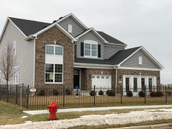 Photo of 3048 Manchester Drive, MONTGOMERY, IL 60538 (MLS # 10452846)