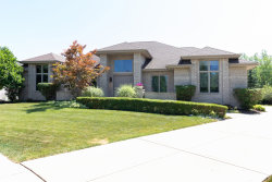 Photo of 17401 Elk Drive, ORLAND PARK, IL 60467 (MLS # 10452875)
