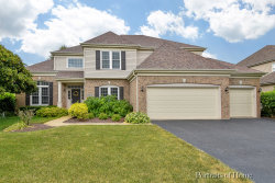 Photo of 0S430 Ellithorp Lane, GENEVA, IL 60134 (MLS # 10453654)