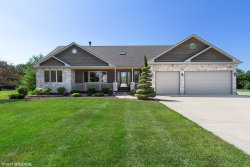Photo of 21149 S Wooded Cove Drive, ELWOOD, IL 60421 (MLS # 10453661)