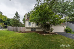 Photo of 1359 Madison Court, ST. CHARLES, IL 60174 (MLS # 10455137)