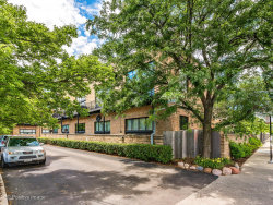 Photo of 2620 N Clybourn Avenue, Unit Number 202, CHICAGO, IL 60614 (MLS # 10455757)