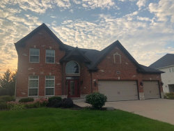 Photo of 12846 Grande Pines Boulevard, PLAINFIELD, IL 60585 (MLS # 10455889)