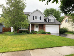 Photo of 162 N Canyon Drive, BOLINGBROOK, IL 60490 (MLS # 10457256)