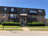 Photo of 4839 W Engle Road, Unit Number 2A, ALSIP, IL 60803 (MLS # 10461354)