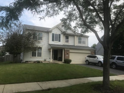 Photo of 25140 Constitution Court, PLAINFIELD, IL 60544 (MLS # 10465125)