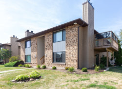 Photo of 1078 Manchester Court, Unit Number 1078, SOUTH ELGIN, IL 60177 (MLS # 10466728)