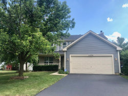 Photo of 1032 Meagan Court, NAPERVILLE, IL 60540 (MLS # 10475047)