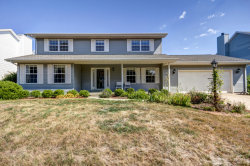 Photo of 3804 Englewood Drive, CHAMPAIGN, IL 61822 (MLS # 10477340)