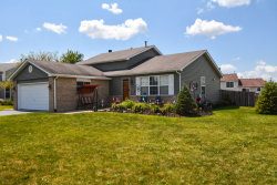 Photo of 7 Danbury Court, LAKE IN THE HILLS, IL 60156 (MLS # 10478330)