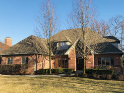 Photo of 10511 Misty Hill Road, ORLAND PARK, IL 60462 (MLS # 10479304)