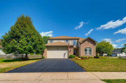 Photo of 10498 Great Plaines Drive, HUNTLEY, IL 60142 (MLS # 10480559)