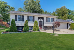 Photo of 488 Franklin Drive, SOUTH ELGIN, IL 60177 (MLS # 10480919)