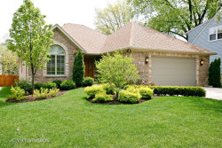 Photo of 231 S Lincoln Street, WESTMONT, IL 60559 (MLS # 10486063)