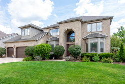 Photo of 3424 Redwing Drive, NAPERVILLE, IL 60564 (MLS # 10486120)