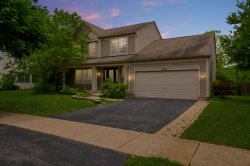 Photo of 1338 Tara Belle Parkway, NAPERVILLE, IL 60564 (MLS # 10488427)