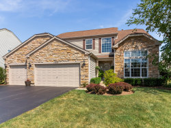 Photo of 10664 Capitol Lane, HUNTLEY, IL 60142 (MLS # 10488678)