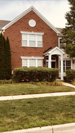 Photo of 971 Quill Lane, WOODSTOCK, IL 60098 (MLS # 10488960)