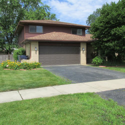 Photo of 13824 S 84th Avenue, ORLAND PARK, IL 60462 (MLS # 10489561)