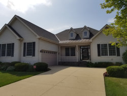 Photo of 23 Chaco Court, SOUTH BARRINGTON, IL 60010 (MLS # 10489866)