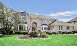 Photo of 14613 Crystal Tree Drive, Orland Park, IL 60462 (MLS # 10491423)