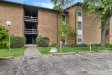 Photo of 5530 E Lake Drive, Unit Number C, LISLE, IL 60532 (MLS # 10491456)