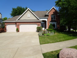 Photo of 14215 Camden Drive, ORLAND PARK, IL 60462 (MLS # 10493784)