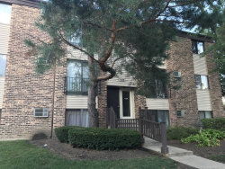 Photo of 192 Dunteman Drive, Unit Number 302, GLENDALE HEIGHTS, IL 60139 (MLS # 10494387)