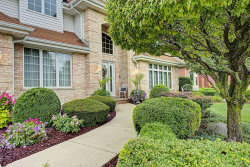Photo of 10648 White Tail Run, ORLAND PARK, IL 60467 (MLS # 10495603)