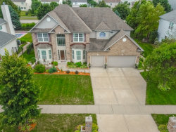 Photo of 25106 Thornberry Drive, PLAINFIELD, IL 60544 (MLS # 10500228)