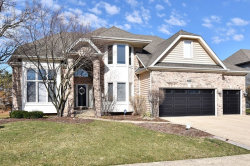 Photo of 2690 Ginger Woods Drive, AURORA, IL 60502 (MLS # 10502660)
