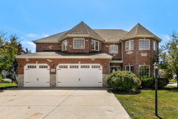 Photo of 12217 Red Clover Lane, PLAINFIELD, IL 60585 (MLS # 10505641)