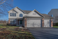Photo of 646 Pearces Frd Road, Oswego, IL 60543 (MLS # 10509575)
