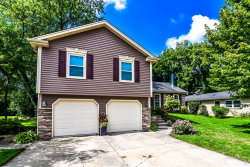 Photo of 822 Spring Street, ROSELLE, IL 60172 (MLS # 10511378)