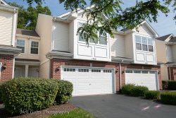 Photo of 1366 W Alder Creek Drive, ROMEOVILLE, IL 60446 (MLS # 10513723)