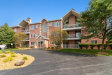 Photo of 11525 Settlers Pond Way, Unit Number 3B, Orland Park, IL 60467 (MLS # 10514533)