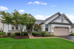 Photo of 12783 Riverview Court, HUNTLEY, IL 60142 (MLS # 10515709)
