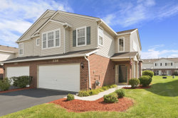 Photo of 917 Berry Path Trail, Unit Number 1194, MATTESON, IL 60443 (MLS # 10516463)