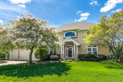 Photo of 1431 Frenchmans Bend Drive, NAPERVILLE, IL 60564 (MLS # 10518980)
