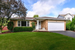 Photo of 135 Steamboat Lane, BOLINGBROOK, IL 60490 (MLS # 10520213)