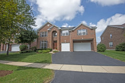 Photo of 1403 Danhof Drive, BOLINGBROOK, IL 60490 (MLS # 10521254)