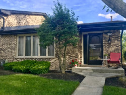 Photo of 7449 W 153rd Street, Unit Number 54, ORLAND PARK, IL 60462 (MLS # 10523573)