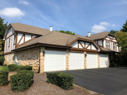 Photo of 1331 Cromwell Court, Unit Number 1331, VERNON HILLS, IL 60061 (MLS # 10523944)